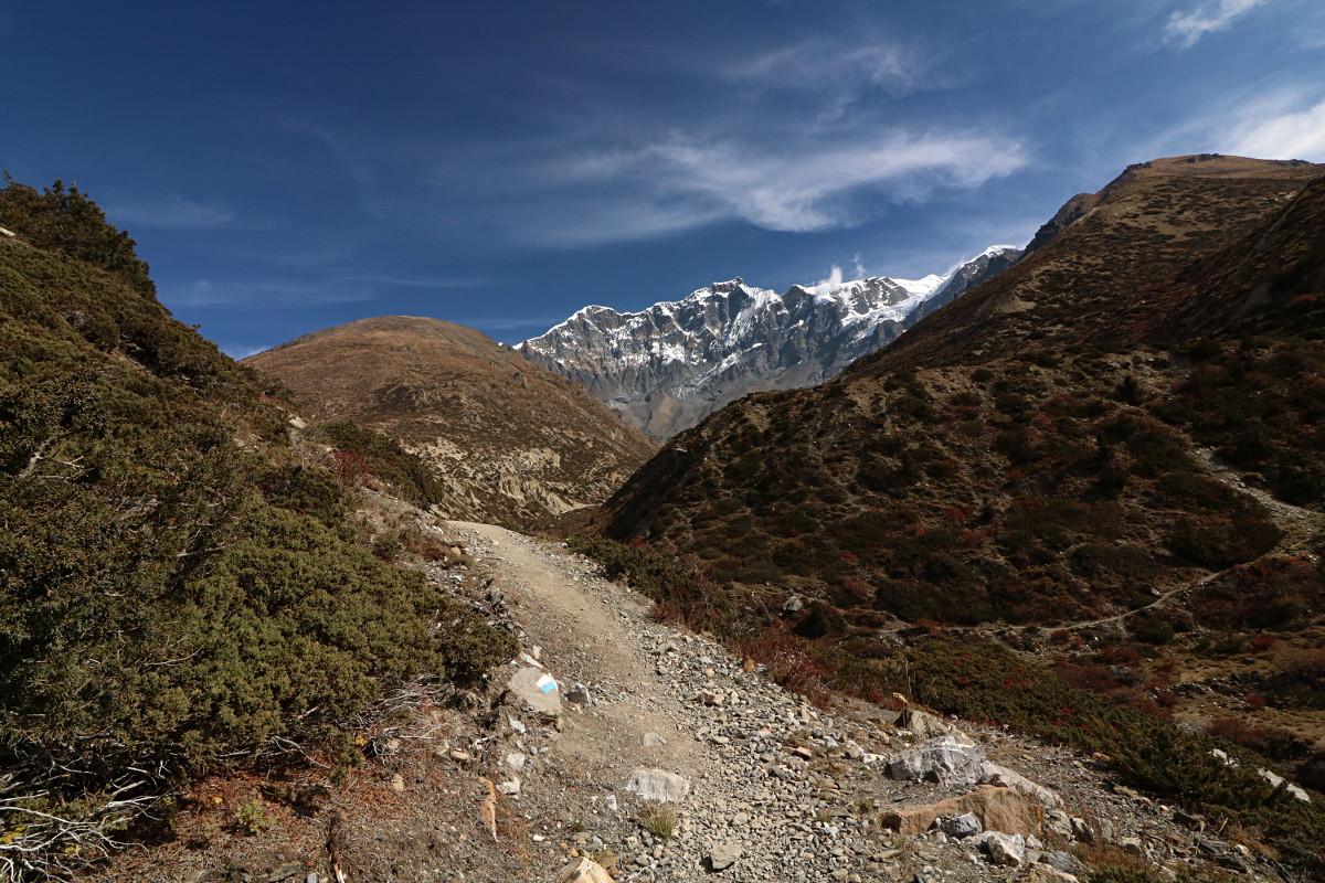 Dzień dziewiąty: z Khangsar do Ledar