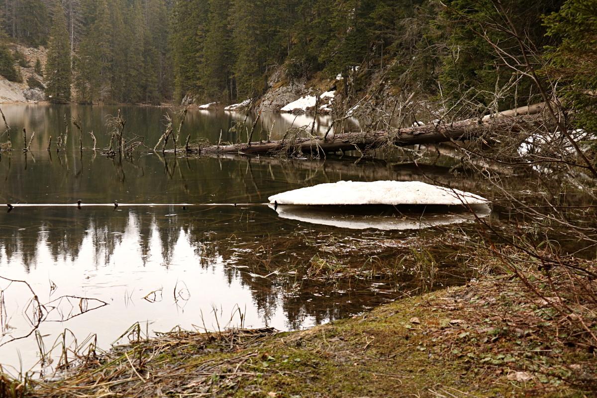Jezioro Zimne