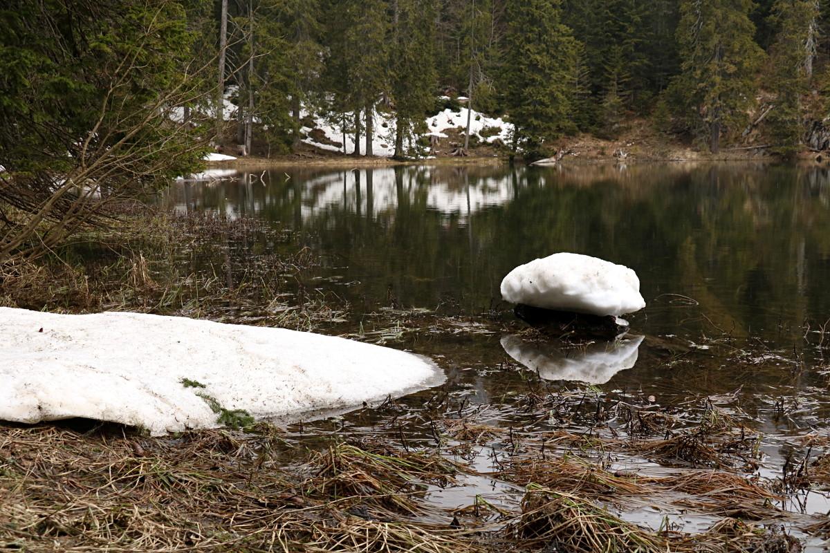 Durmitor: Crno i Zminje Jezero, Lokvice