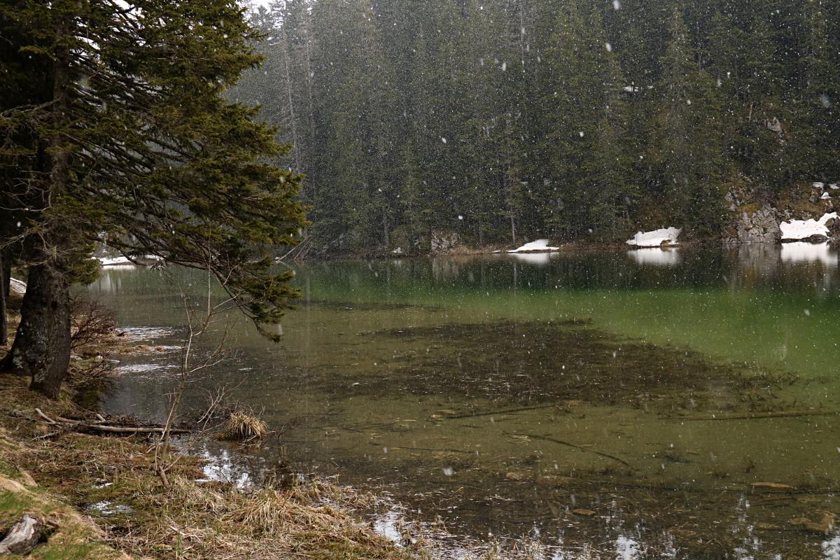Śnieg sypie nad jeziorem